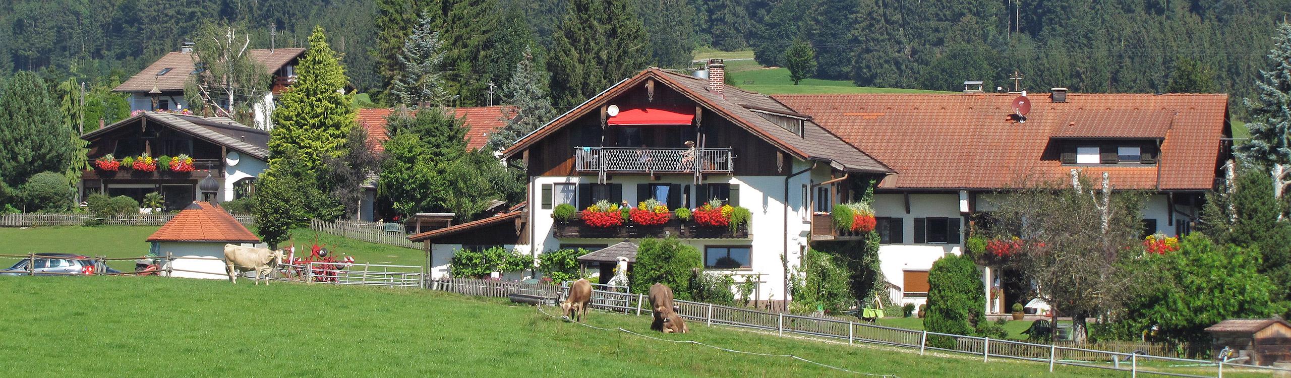 Alpenseehof :: Bauernhofurlaub im Allgäu